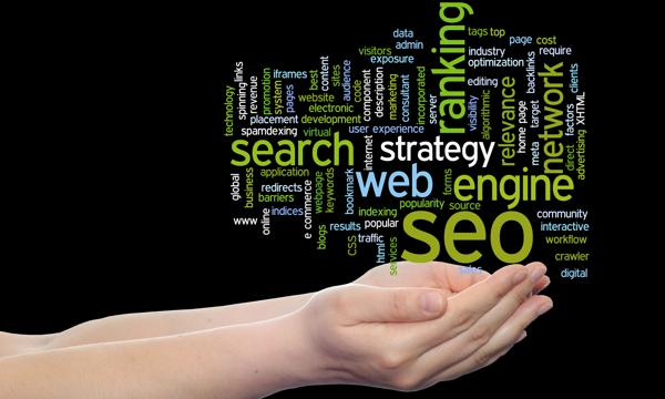 Max Web Profiling Local Search Engine Optimization Services